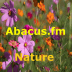 abacusfm-nature