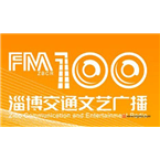 zibo-traffic-art-fm1000